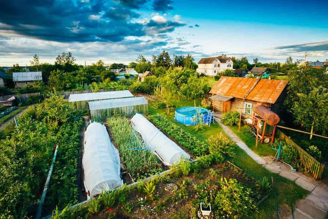 how to get started with permaculture