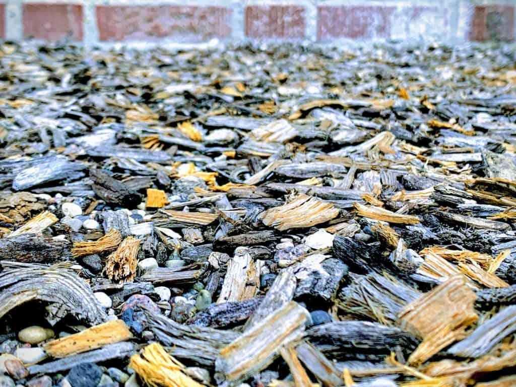mulch myths debunked