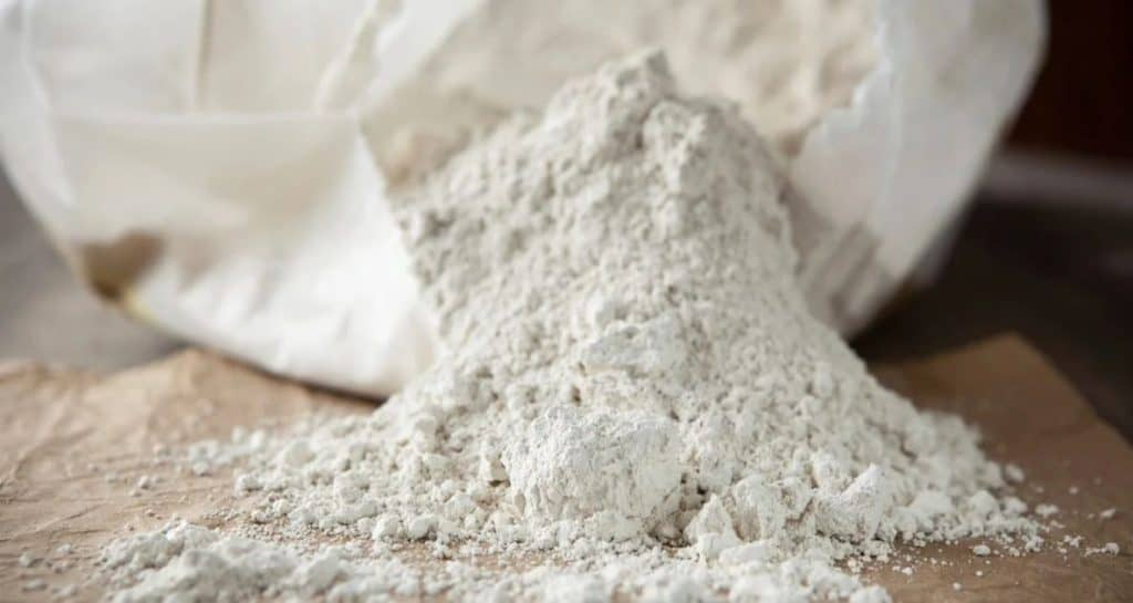 diatomaceous earth facts