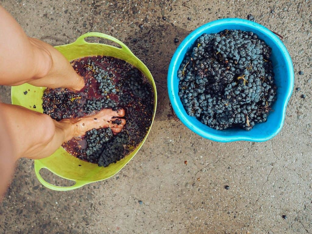 general winemaking method