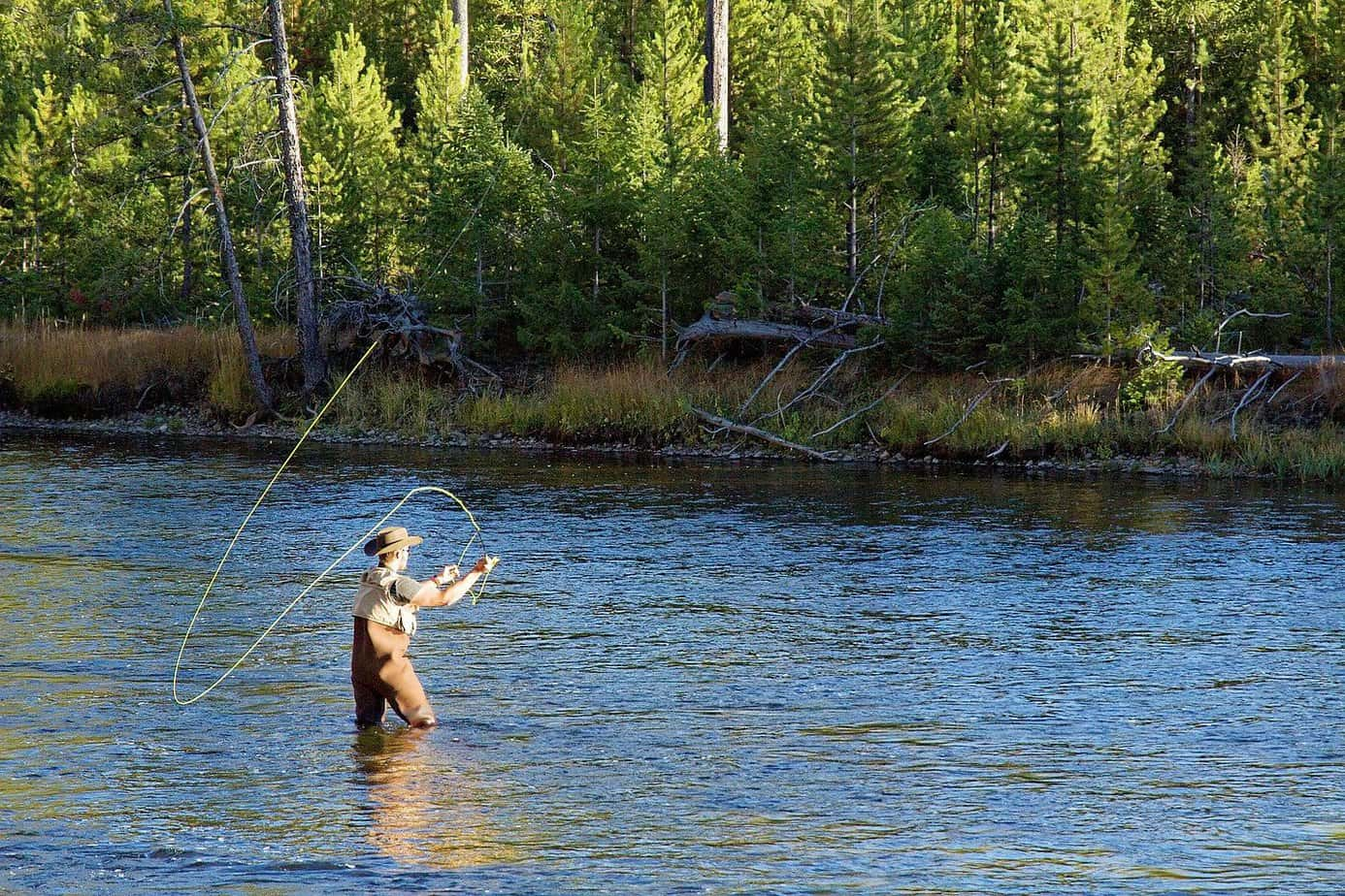 learning the art of fly fishing